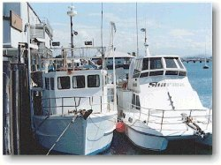 Fishing boats moored at the dock of Mackay Reef Fish Supplies